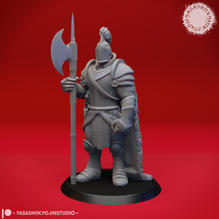 Armored Fighter - Tabletop Miniature