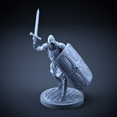 Skeleton - Heavy Infantry - Sword + Square Shield - Attacking Pose