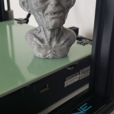 Picture of print of GOLUM BUST Support Free This print has been uploaded by Scott Andrew
