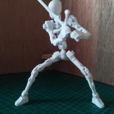 Action Figure Frame Ver.01