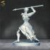 African Warriors image