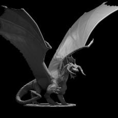 Black Dragon Wyrmling Updated