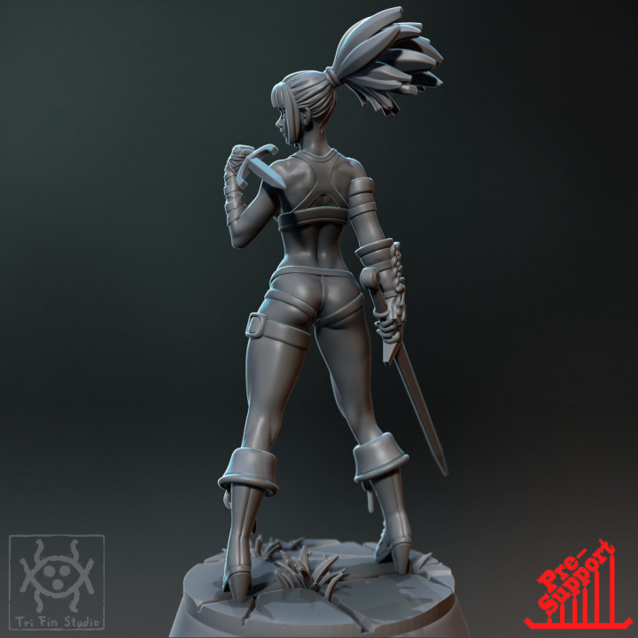 Pin up - Dual sword fighter