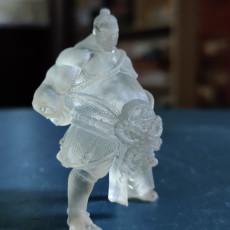 Picture of print of Takuma Sumo Wrestler - Presupported