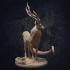 Glade Mystic Deer - Presupported image