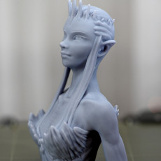Picture of print of DeeQuu Bust