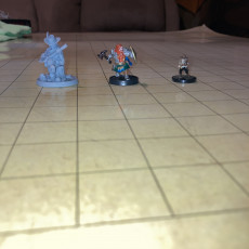 "Picture of print of KICKSTARTER FREE ''Halfling Bard"" Presupported 3D Model"