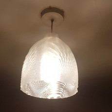 Picture of print of Lampshade SP-14