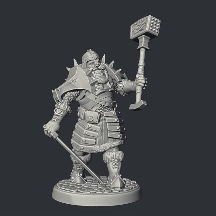 Dwarf Dragon Warrior