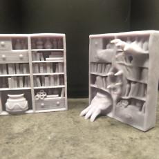 Bookcase Mimic