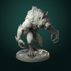 Common Werewolf (2 variants) pre-supported