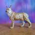 Eurasian Lynx image