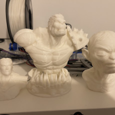 Picture of print of Planet Hulk Bust Support Free Remix