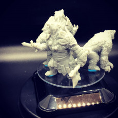 Picture of print of Bear Vanguard