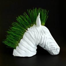 Zebra Planter