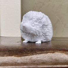 Picture of print of Hedgehog
