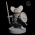 Mousefolk with Cheese Shield and Needle Sword image