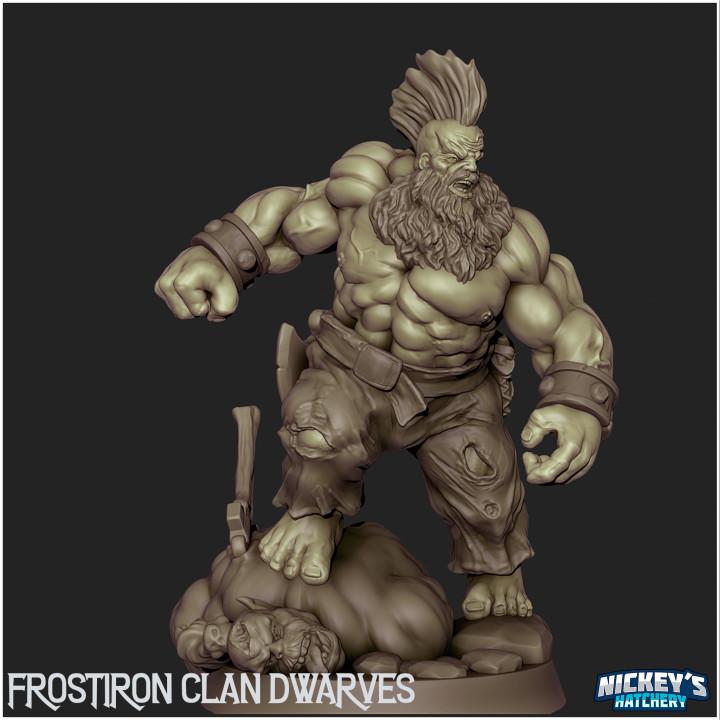 Frostiron Dwarf Warriors - The Frostiron Clan's Cover