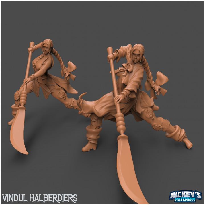 Vindul Halberdiers - The Warriors in the Wind's Cover