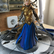 Picture of print of Female Knight