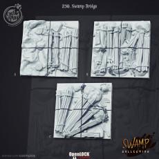 Swamp (September 2020)