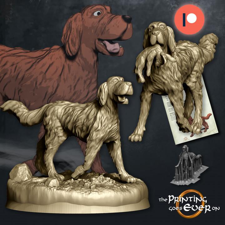 720X720-dogs-1.jpg