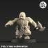 Dwarf Berserkers image