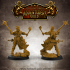 Level Up Paladins - Female (3x modular 32mm scale miniatures) PRESUPPORTED image