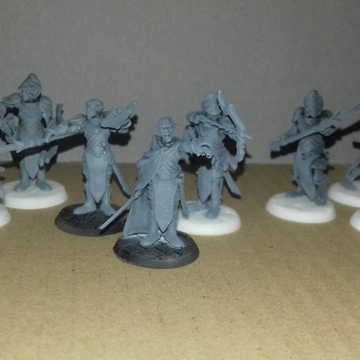 Elven Spearmen Set, 3 Miniatures, Dungeons&Dragons !FREE!, !SUPPORTS!