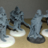 Elven Leaders Set, 2 Miniatures, Dungeons&Dragons !FREE!, !SUPPORTS! image
