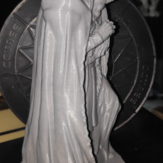 Picture of print of Nosferatu Master