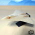 Stealth Air Fighter image