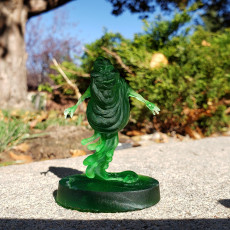 Picture of print of Common Slimer
