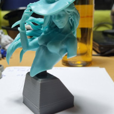 Picture of print of Anita the Young Witch bust pre-supported