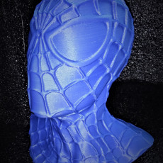 Picture of print of SPIDERMAN Bust