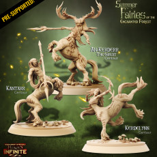 Summer Fairies Of The Enchanted Forest