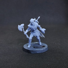 Picture of print of Warrior