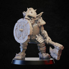 Goblin knight with axe abd sheld