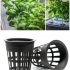Net Cup / Net Pot  for Hydroponic Gardening image