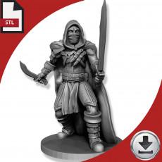Rogue - Sword and Dagger