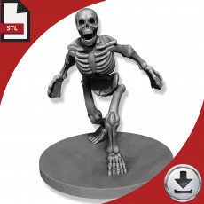 Graveyard Skeleton - Roaring