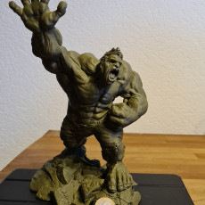 Picture of print of Crazy Hulk Support Free Remix