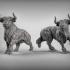 Bulls image