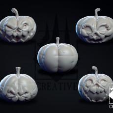 Pumpkin Patch Pack
