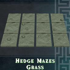 Hedge Mazes Grass