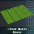 Hedge Mazes Grass image