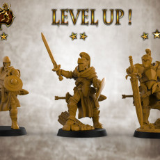 Level Up Heroes