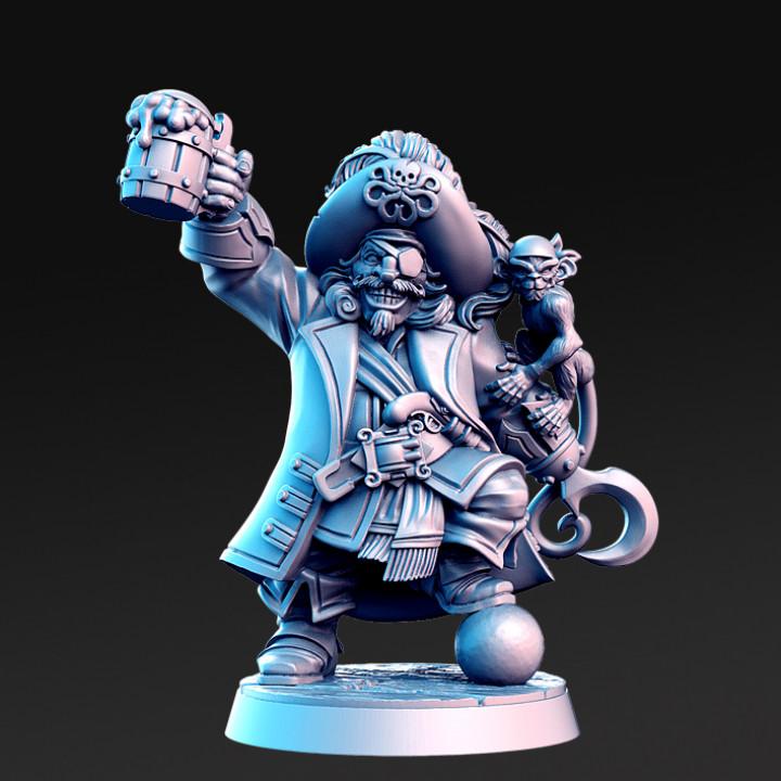Madolff - Male Dwarf PIrate Captain - 32mm - DnD