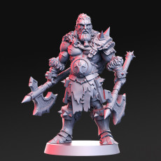 Einar - VIking - 32mm - DnD