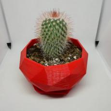 Geometric Plant Pot